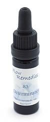 Flow Remedies edelsteenremedie 83. Determination